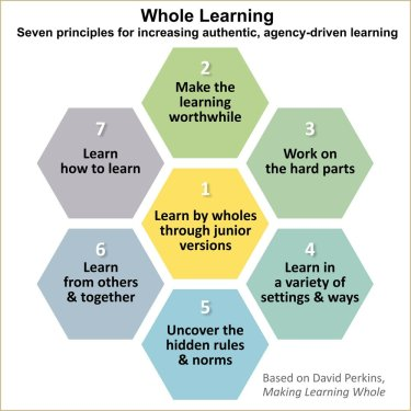 whole+learning+honeycomb+revised+terms+20171107v3-0